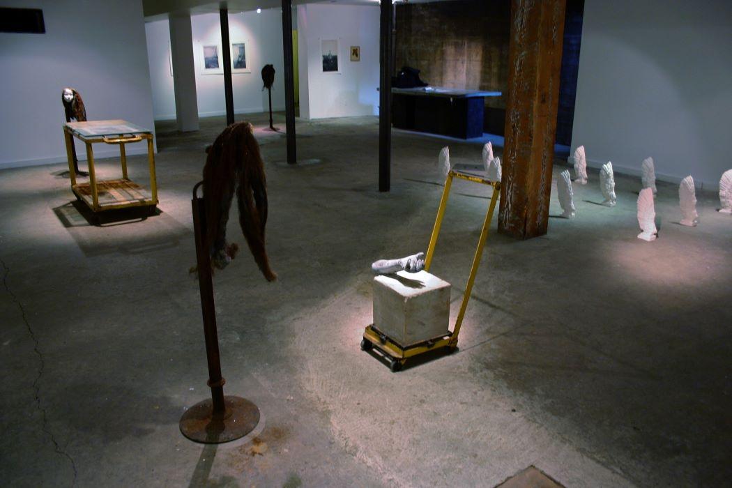 Morbid Anatomy, 2005 (3)